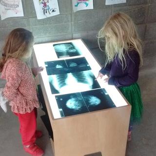 Aprendiendo de anatomía osea en las mesas de luz