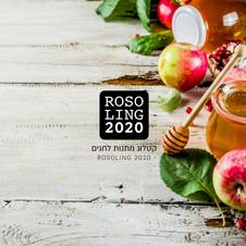 ועדים ראש השנה 2020