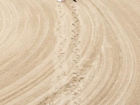 砂漠ウェディング。