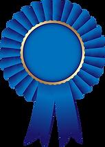 toppng.com-ribbon-blue-png-jpg-transpare