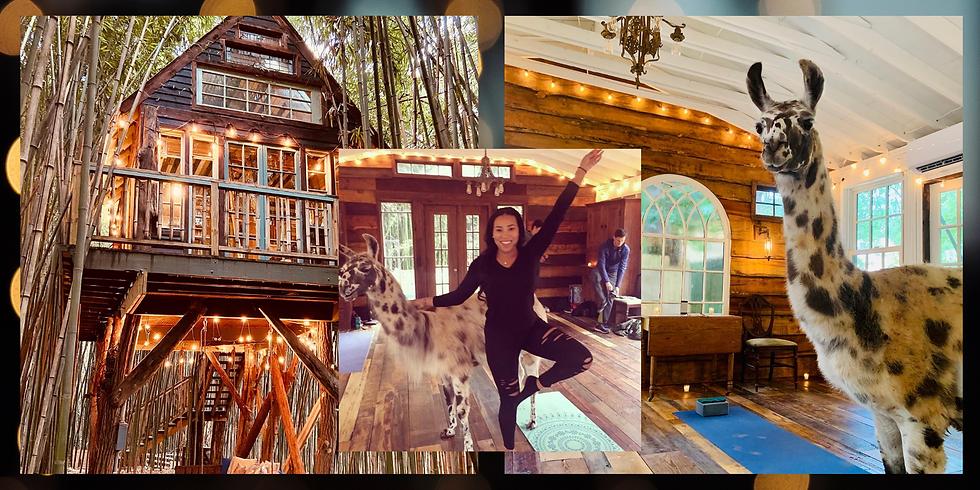 Alpaca Treehouse Yoga and Reflection Retreat.
