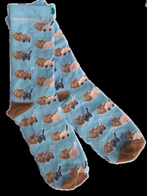 Sniffing cat sokken