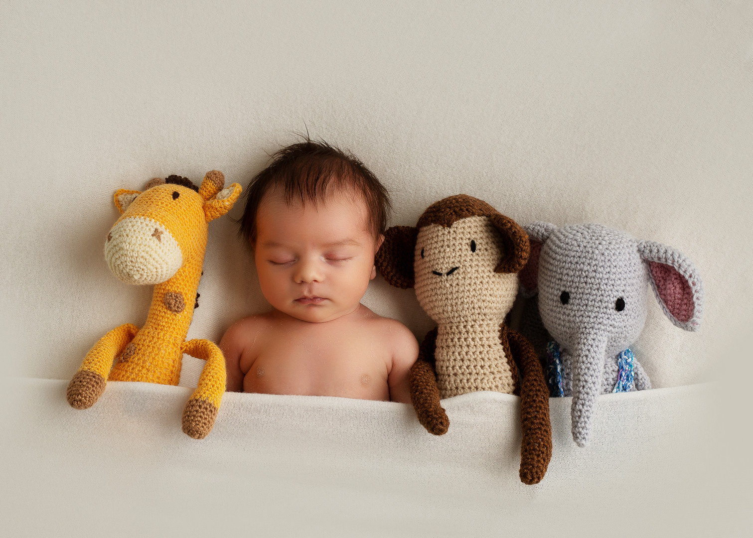 Babybilderlandau