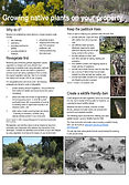 Fact Sheet - Growing native plants on yo