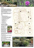 Fact Sheet - Native garden plan.jpg