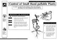 Control of Small Plants (Pull by Hand).j