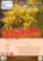 2018 Wildflower walk 2 poster - Passchen