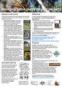 Fact Sheet - Managing native plants on y