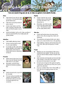 Wildlife Friendly Garden Flyer.jpg