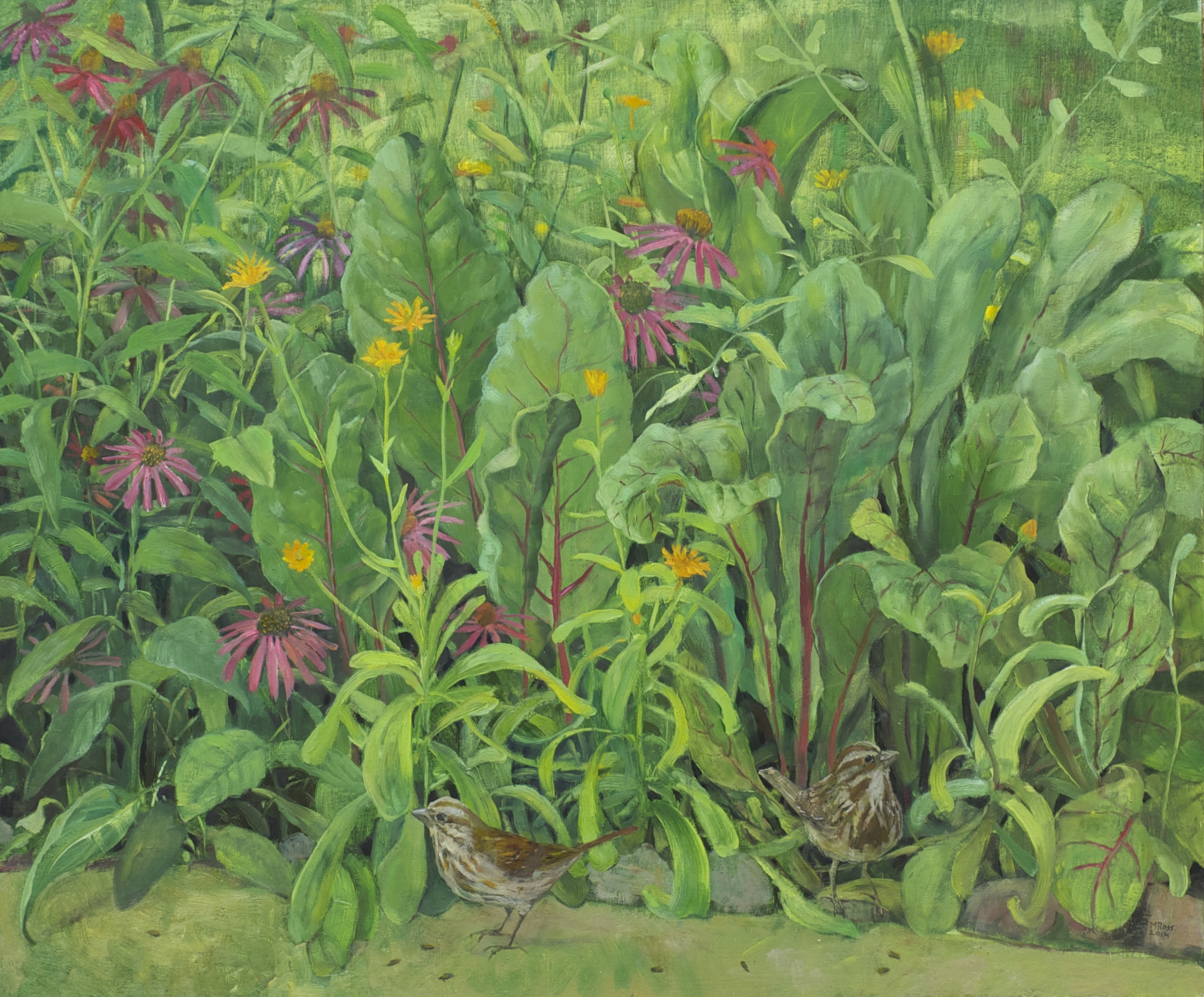 Landscape with Chard and Echinacea