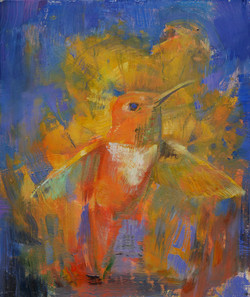 New Year Hummingbird