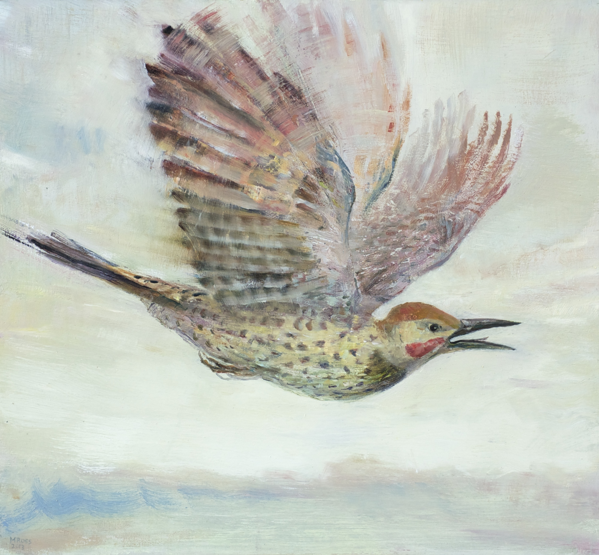 Flying Flicker