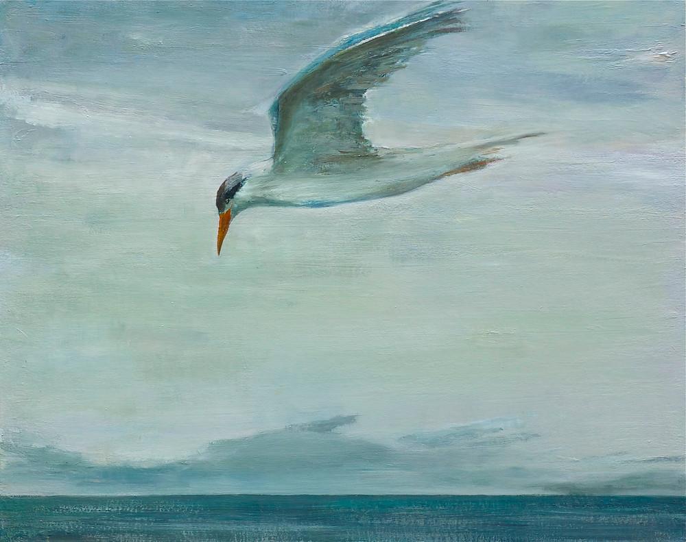 Tern+(24x30+2011).jpg
