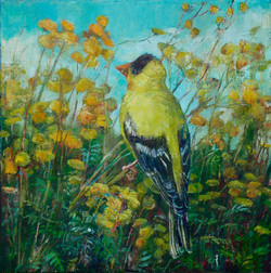 Goldfinch and Tansy