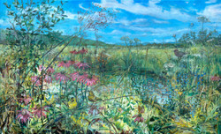 Finches in a Meadow