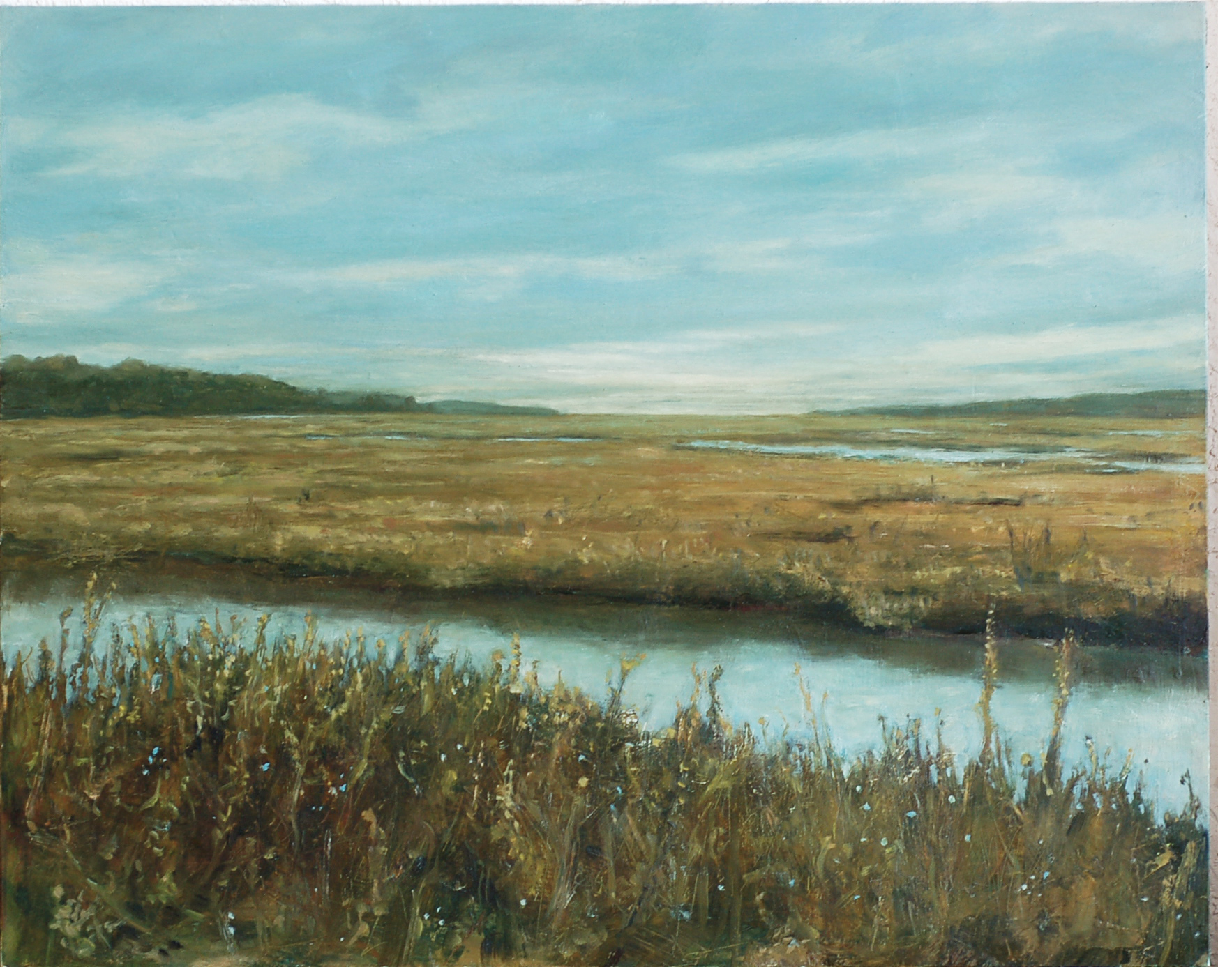 Marshlands, Tomales Bay