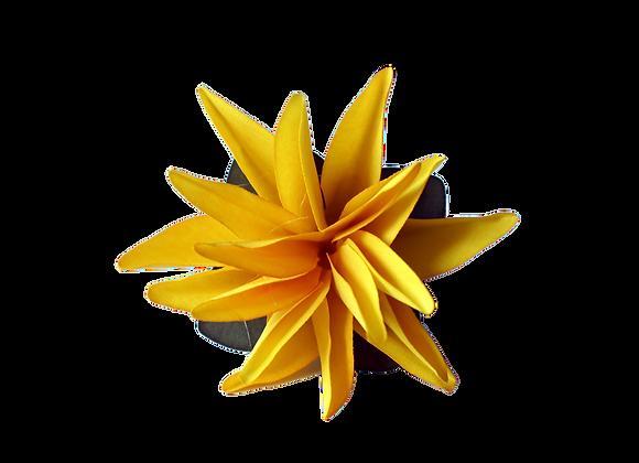Flor de Liz
