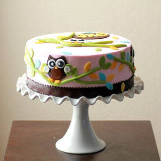 Unisex Surprise Owl Cake
