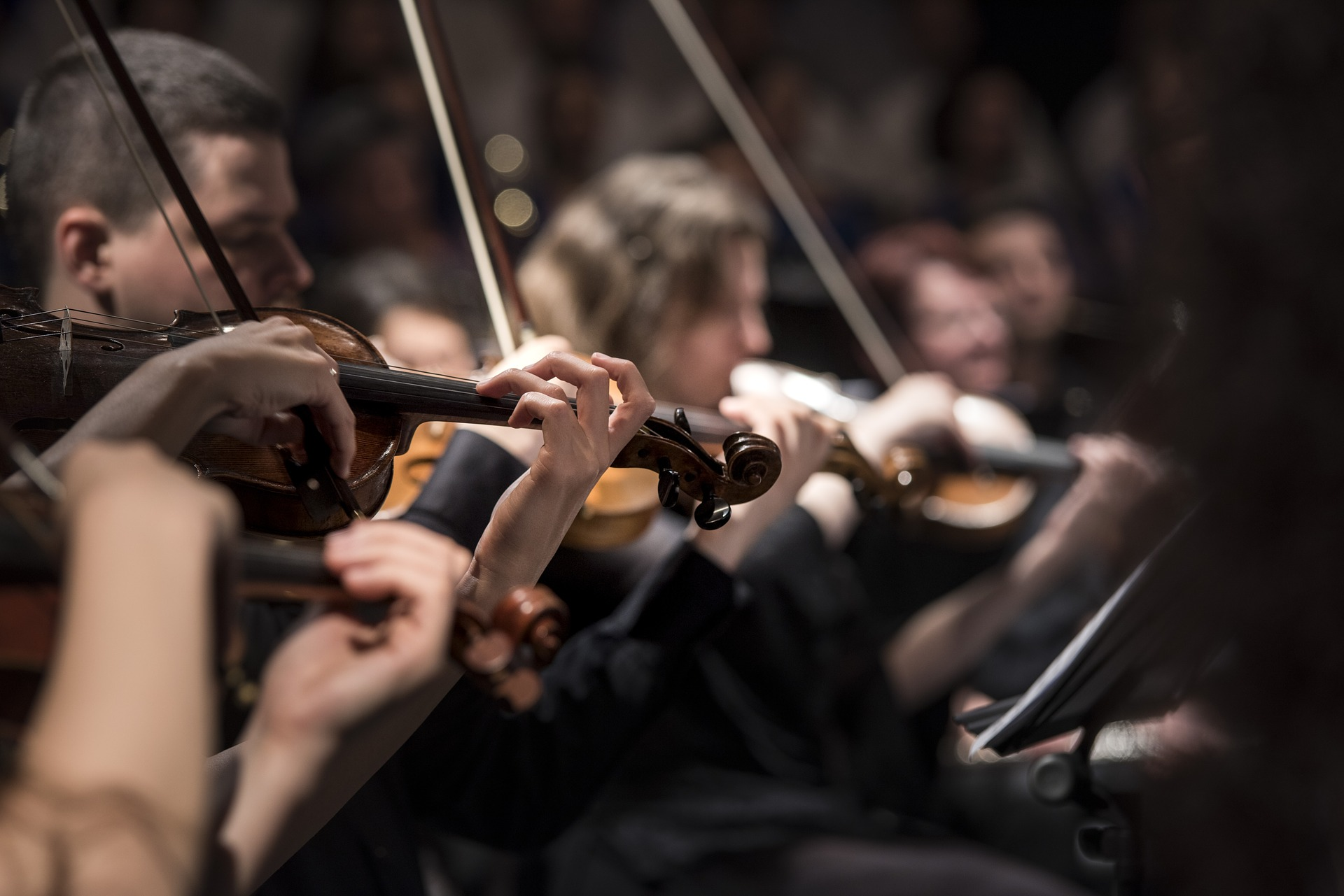 Classical Music Concert for Private Affa