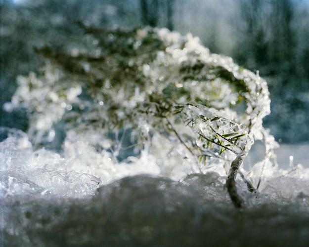 070b5691f2cb67cb-WinterScene.jpg