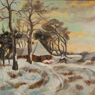 Veluws Winterlandschap