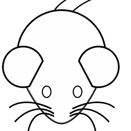 Large Adult Mouse