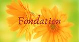 NQ Fondation 2.png