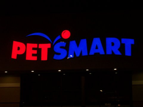 Petsmart night.jpg