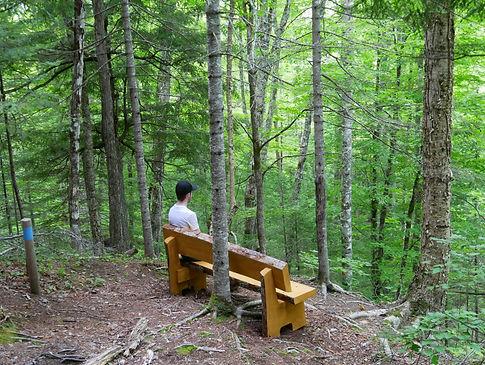 sit spot.jpg