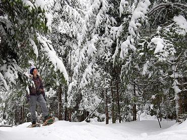 snowshoe pic.jpg