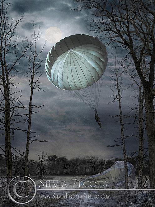 """""""Landing by Moonlight"""""""