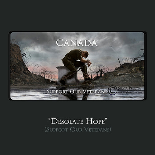 """Desolate Hope"""