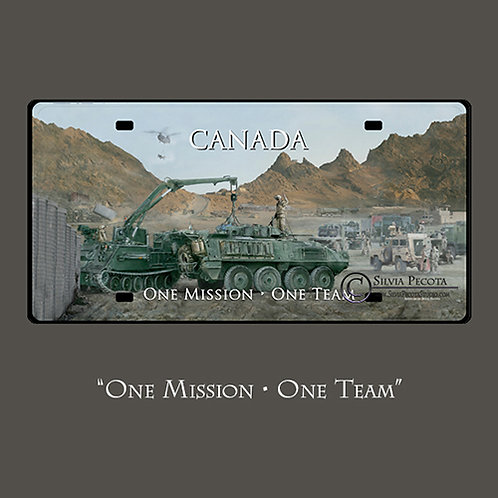 "(NSE) ""One Mission - One Team"""
