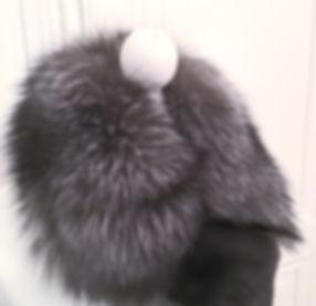 silver fox 3_edited.jpg