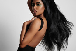 shutterstock_350965784 THIRD BLACK BEAUTY FOR WEB AND AD