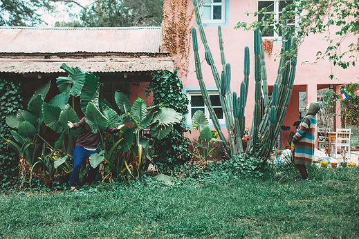 LUNAENTAURO_afuera-14.jpg