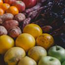 LUNAENTAURO_veggies-15.jpg