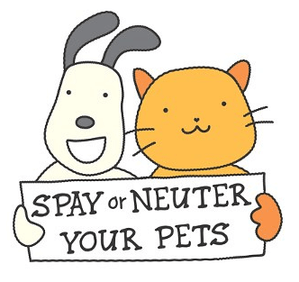 🐕🦺🐈Don't Litter, Spay/Neuter your Critter🐕🦺🐈