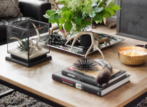 Vignettes Styling & Bookcases