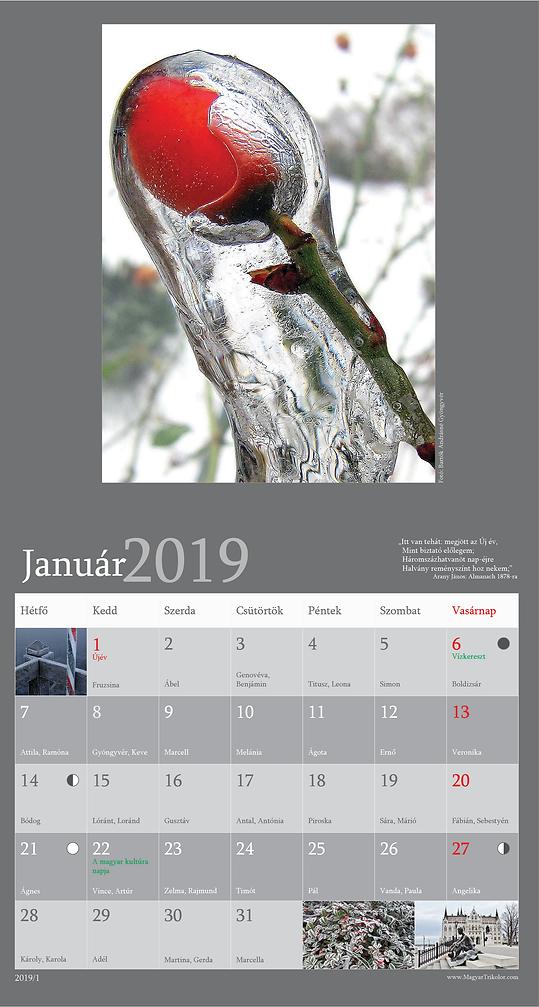 2019-as naptár_16-CMYK-smal2.png