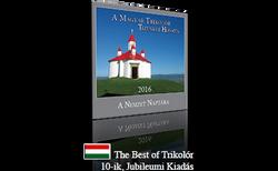 2016 naptar Transz Best Magyar ikon .png
