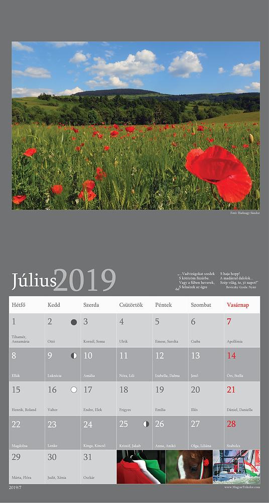 2019-as naptár_16-CMYK-smal8.png