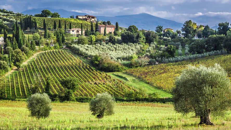 Italiensk Vin Dag -  hvilken der er din favorit?