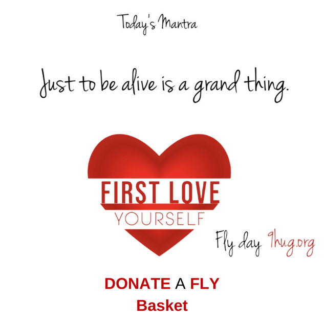 FLY Day Slide 1.15.png