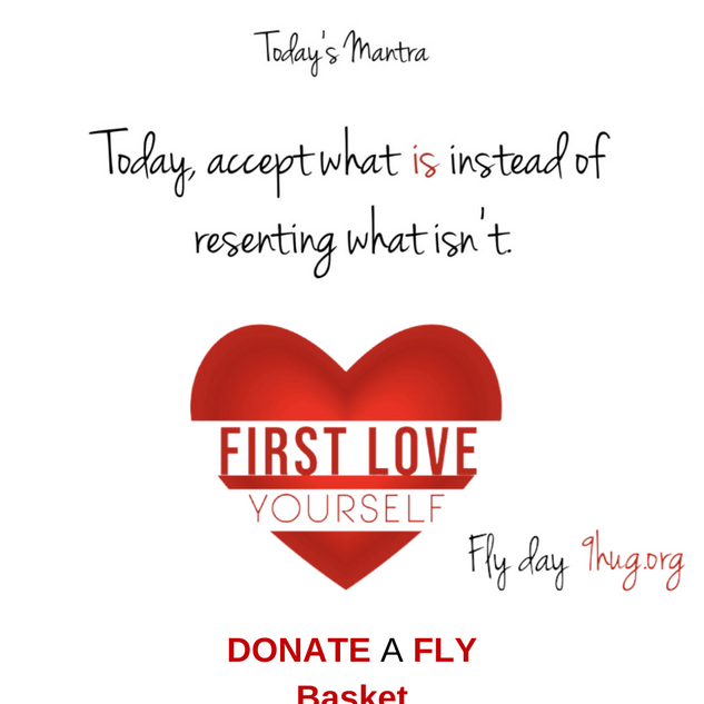 FLY Day Slide 1.5.png