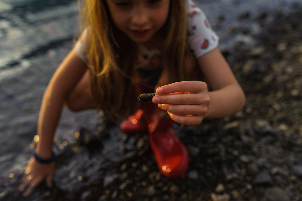finding shells and rocks on the beach at lake Saiko