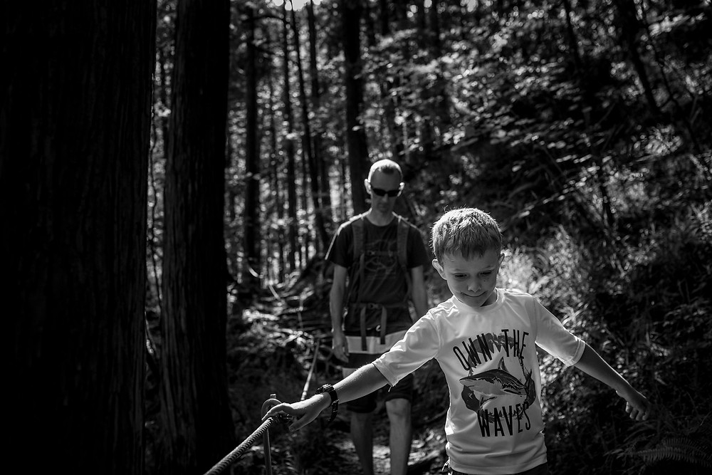 Xander hikes through the woods