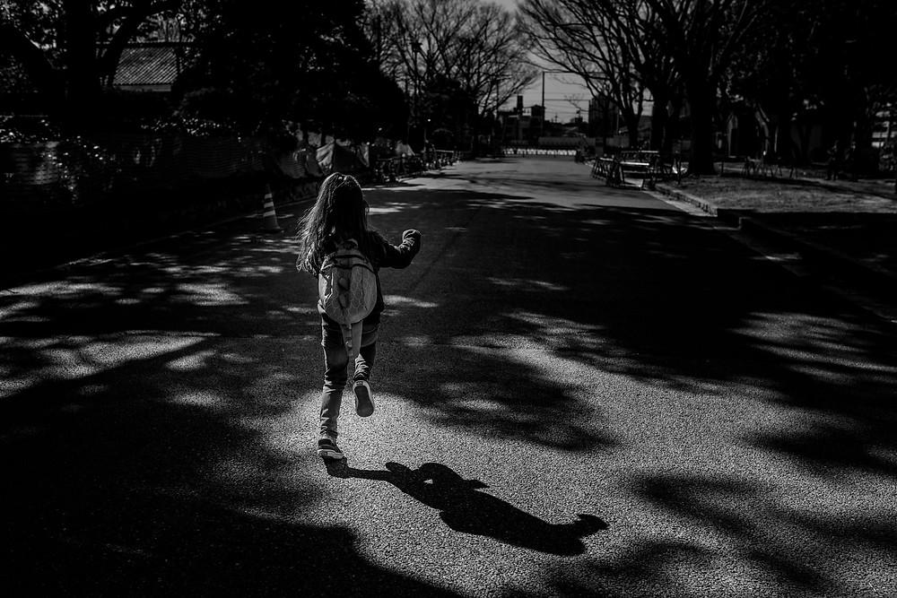 Bentley runs to the park through the shadows
