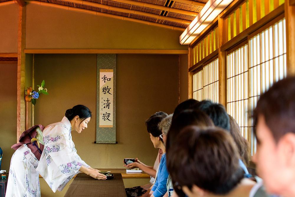 Woman serving tea for Ajisai tea ceremony