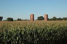 silos 10-8-06 087.jpg